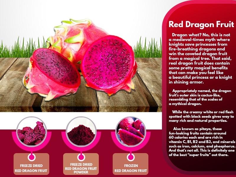 Freeze Dried Powder : Red Dragon Fruit Powder