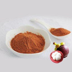 Mangosteen-Powder